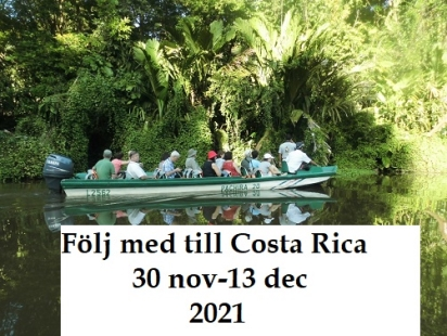 Costa rica 30 nov-13 dec 2021